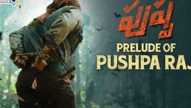 Pushpa Raj Prelude: Goosebumps Guaranteed