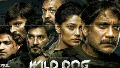 Wild Dog Trending Top India Wide