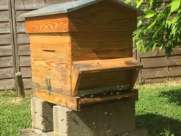 Connected Beehive