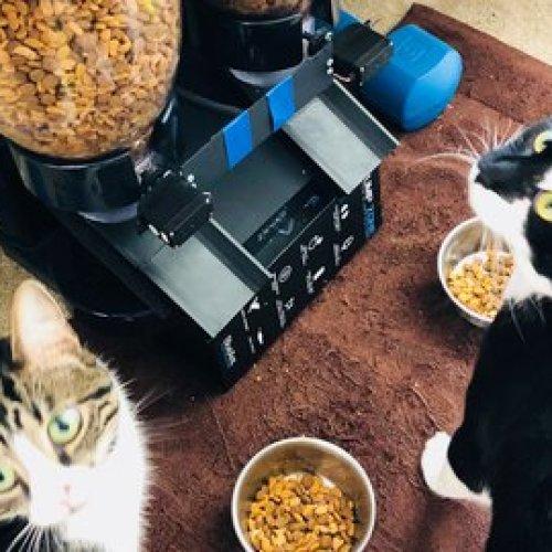 Automated Cat Food Dispenser