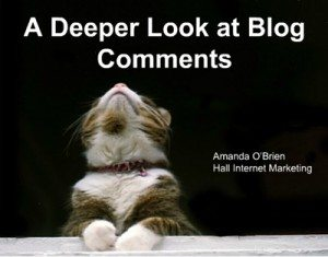 deeper look at blog comments
