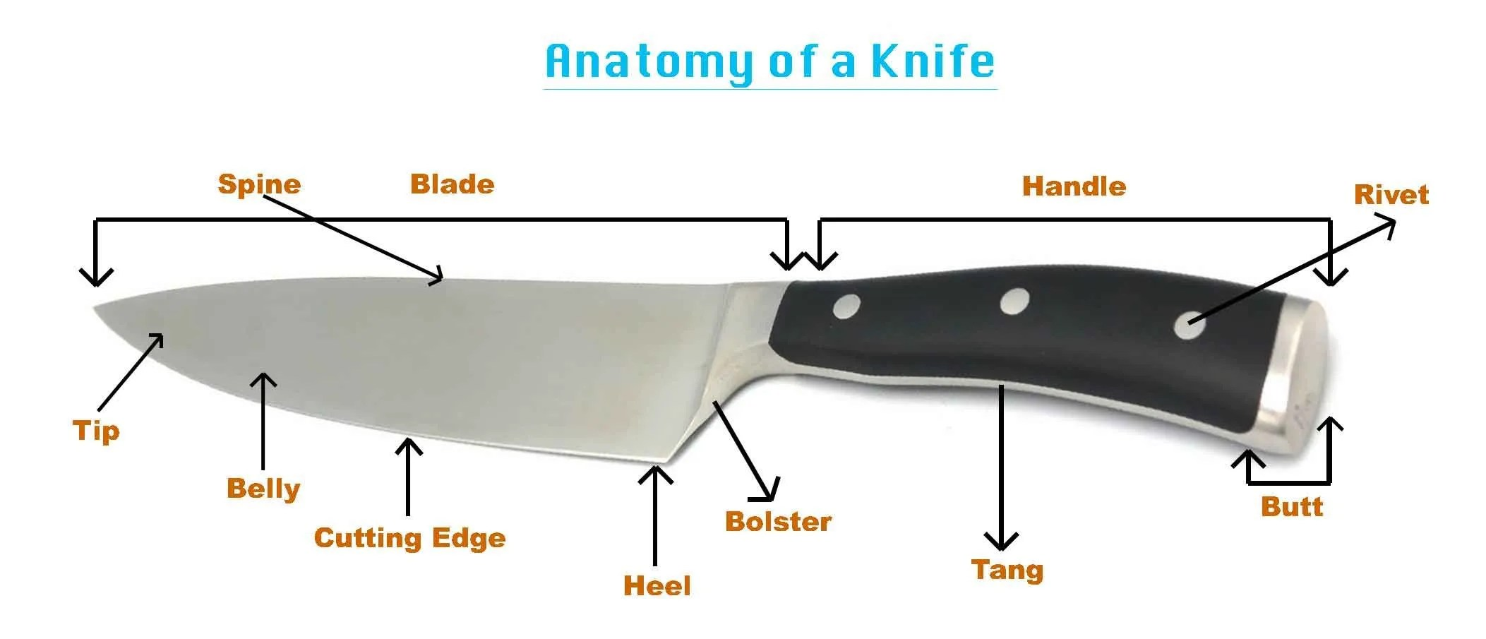 Parts Of A Knife Diagram