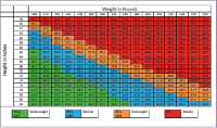 Bmi older adults chart | Vibrating cock ring