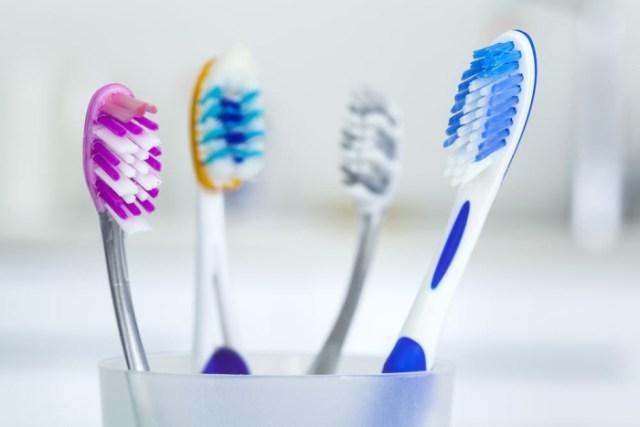bentuk dan fungsi sikat gigi