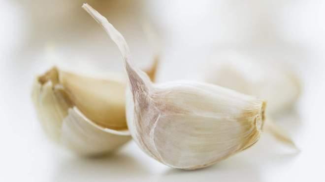 Hasil gambar untuk bawang putih