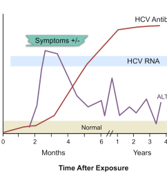 note the temporal appearance of laboratory markers typically observed with acute hepatitis c infection hcv figure 3 laboratory markers with acute  [ 1200 x 867 Pixel ]