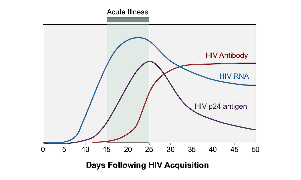 hight resolution of acute hiv infection is defined as the phase of hiv disease that occurs immediately after hiv figure 1 acute hiv infection