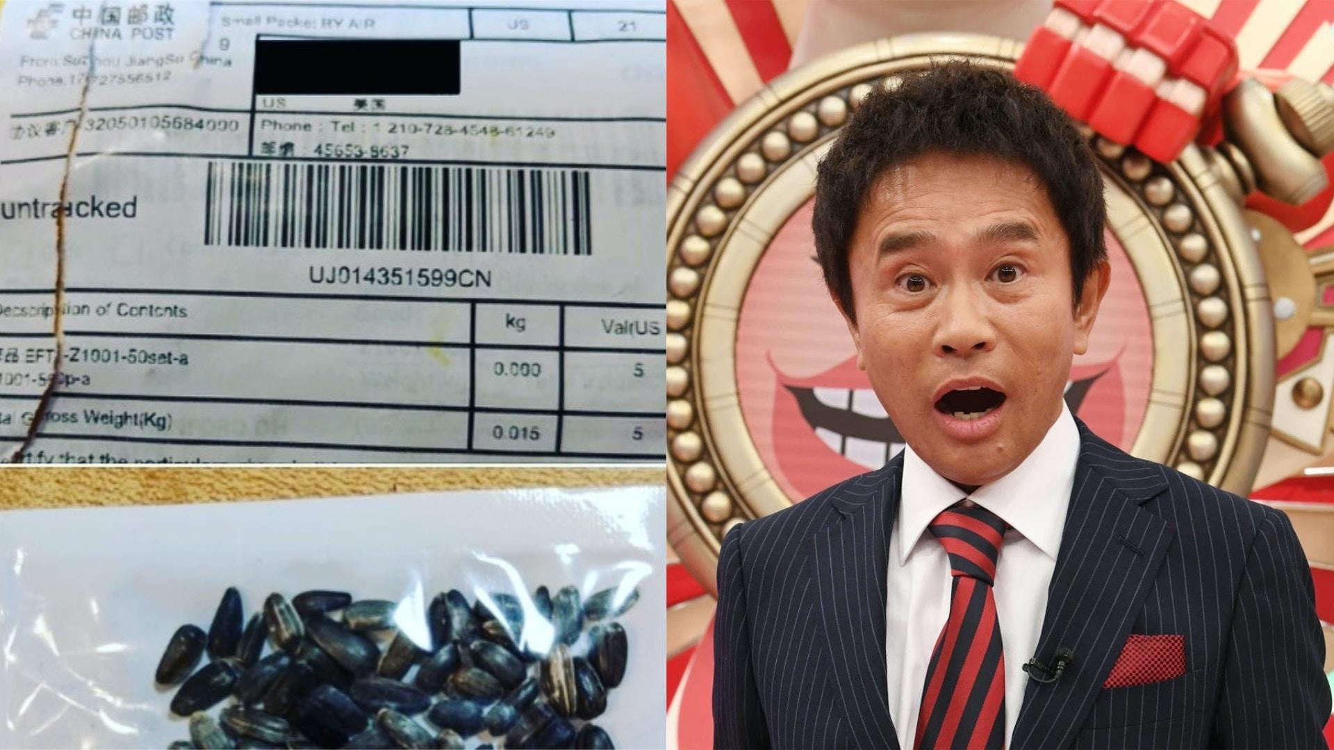 「中國神秘種子」殺到日本 知名搞笑藝人濱田雅功老婆也中招 香港01 即時國際