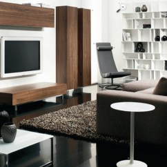 Modern Contemporary Living Room Pictures Images Designs Furniture