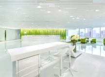 Green Office Inspiration: Where Line meets Lime!