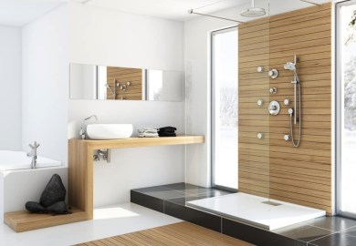 Small Bathroom Designs Without Tub