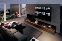 modern living room with dark wood media center
