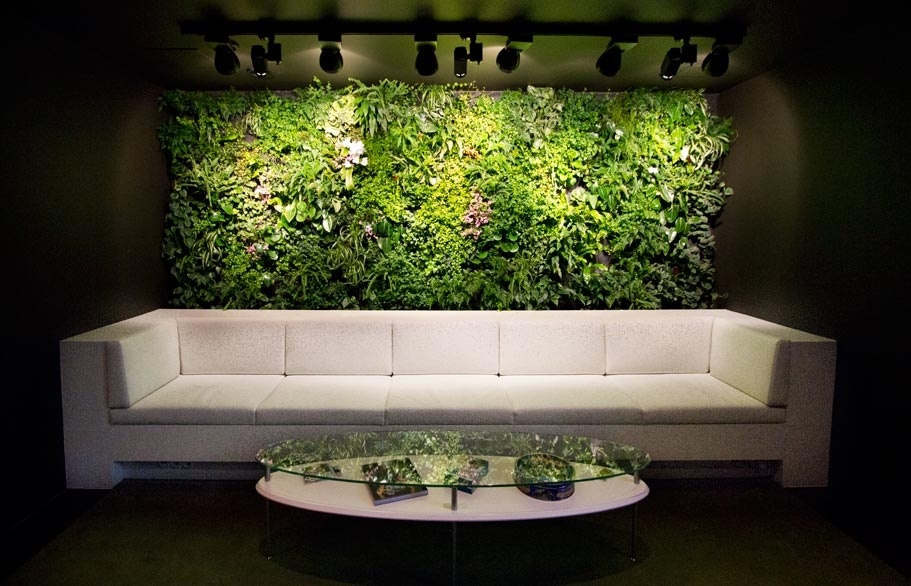 Living Wall Diy 790 Jpeg 155kB Feature Wall Ideas Living Room