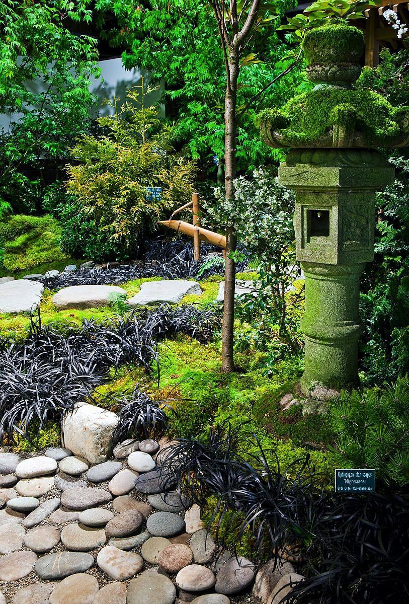 Small White Stones Garden