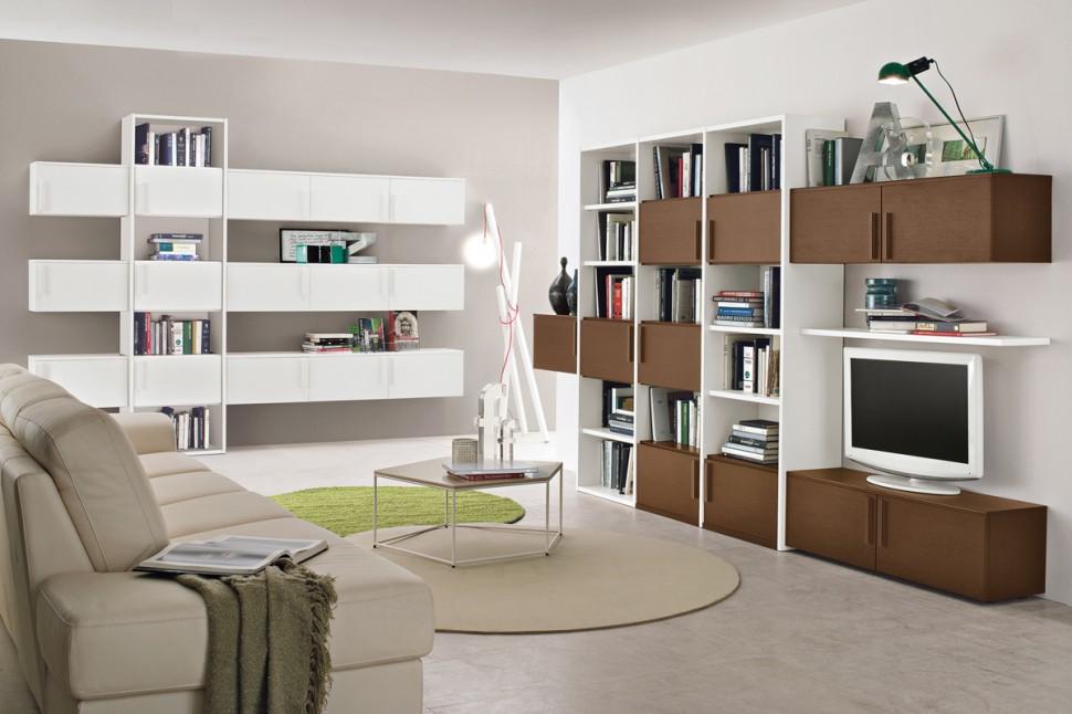 Living Room Bookshelves 62  Interior Design Ideas