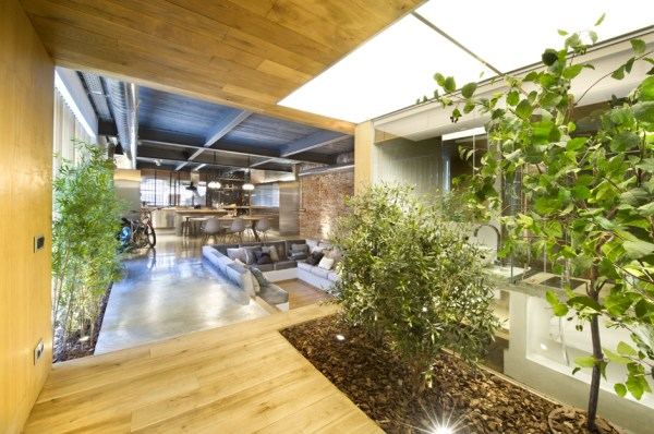 industrial home with interior planting