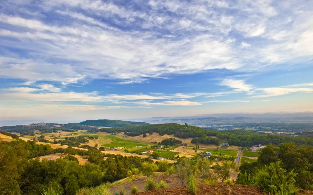 A Serene California Wine Country Home