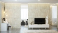 Contemporary Apartment Design with Classical Features