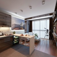 3 Distinctly Themed Apartments Under 800 Square Feet with ...