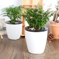 The Big List Of Self-Watering Planters For Stylish ...