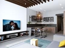 Small Open Concept Apartment Design