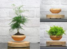 Cool Product Alert: Magnetically Levitating Planter
