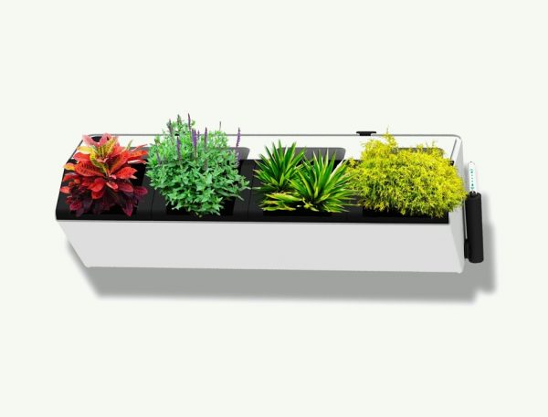 $55 BUY IT. This Modern Wall Mounted Herb Planter ...