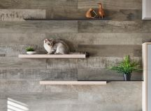How To Make A Cat Happy: Cat Friendly Home Design images 2