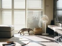 How To Make A Cat Happy: Cat Friendly Home Design images 7