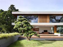 The Contemporary Home Of A Majestic Pre-War Rain Tree