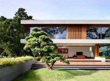 The Contemporary Home Of A Majestic Pre-War Rain Tree images 5