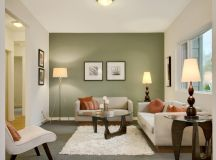 30 Gorgeous Green Living Rooms And Tips For Accessorizing Them images 17