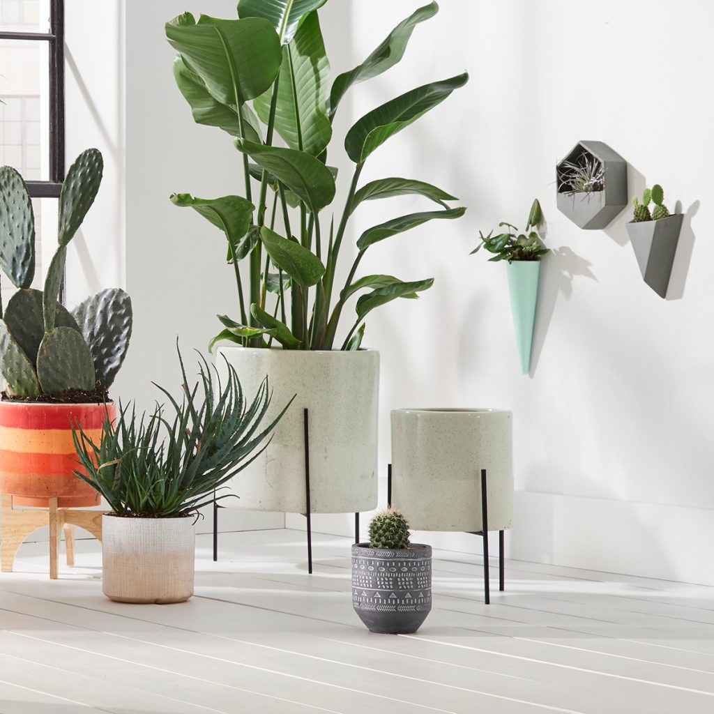 Beautiful Mid-century Style Ceramic Planters With Stand