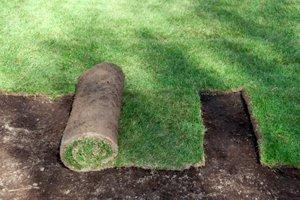 2019 Sod Installation Costs  Lay Yard Grass or Resod a