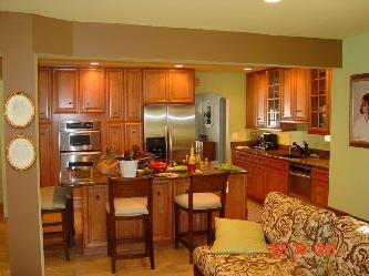 Examples of Kitchens New and Remodeled Pictures and Photos