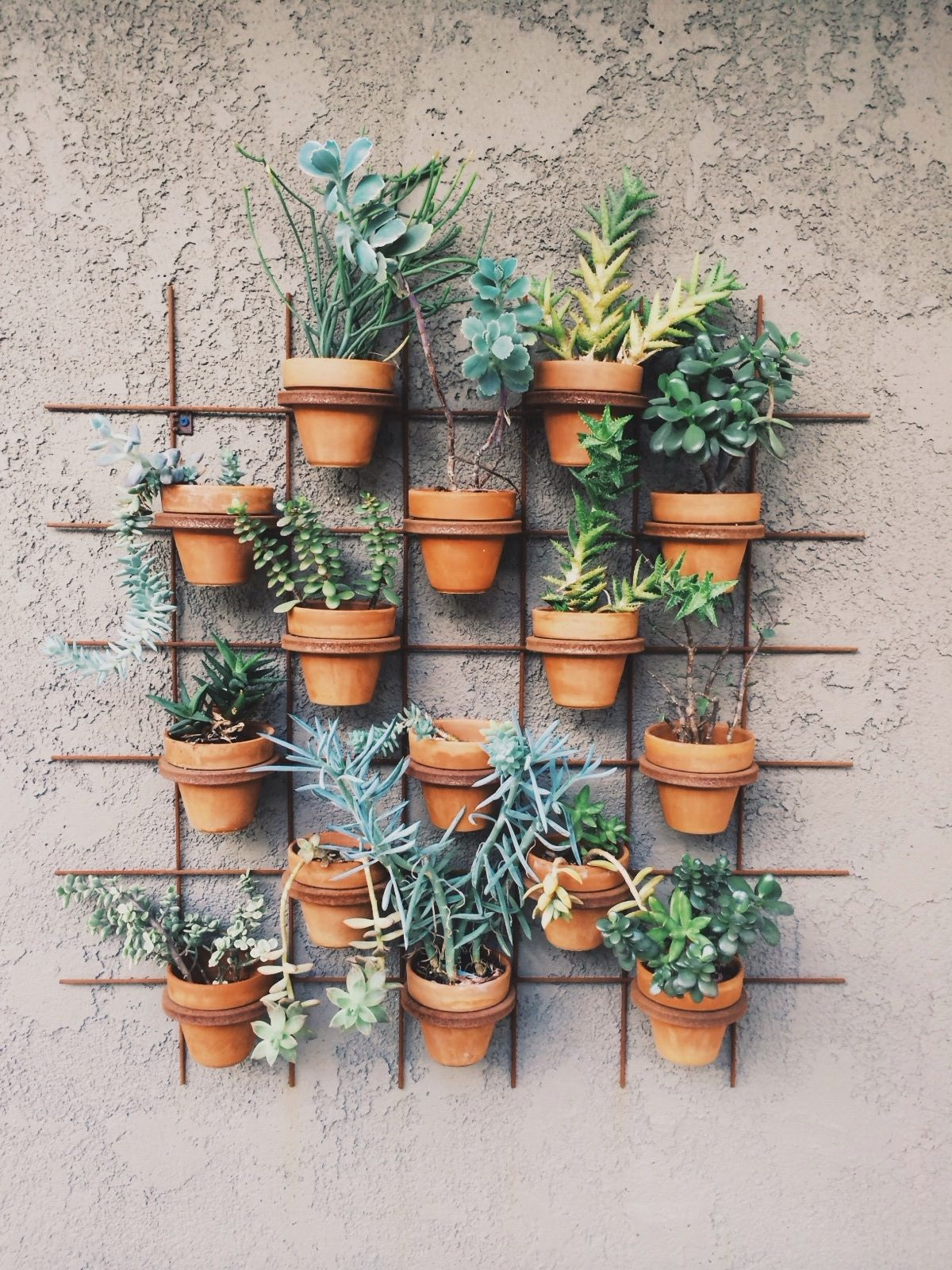 The 50 Best Vertical Garden Ideas And Designs For 2017