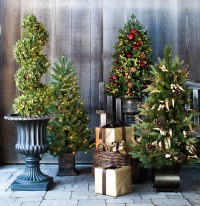 22 Best Outdoor Christmas Tree Decorations and Designs for ...