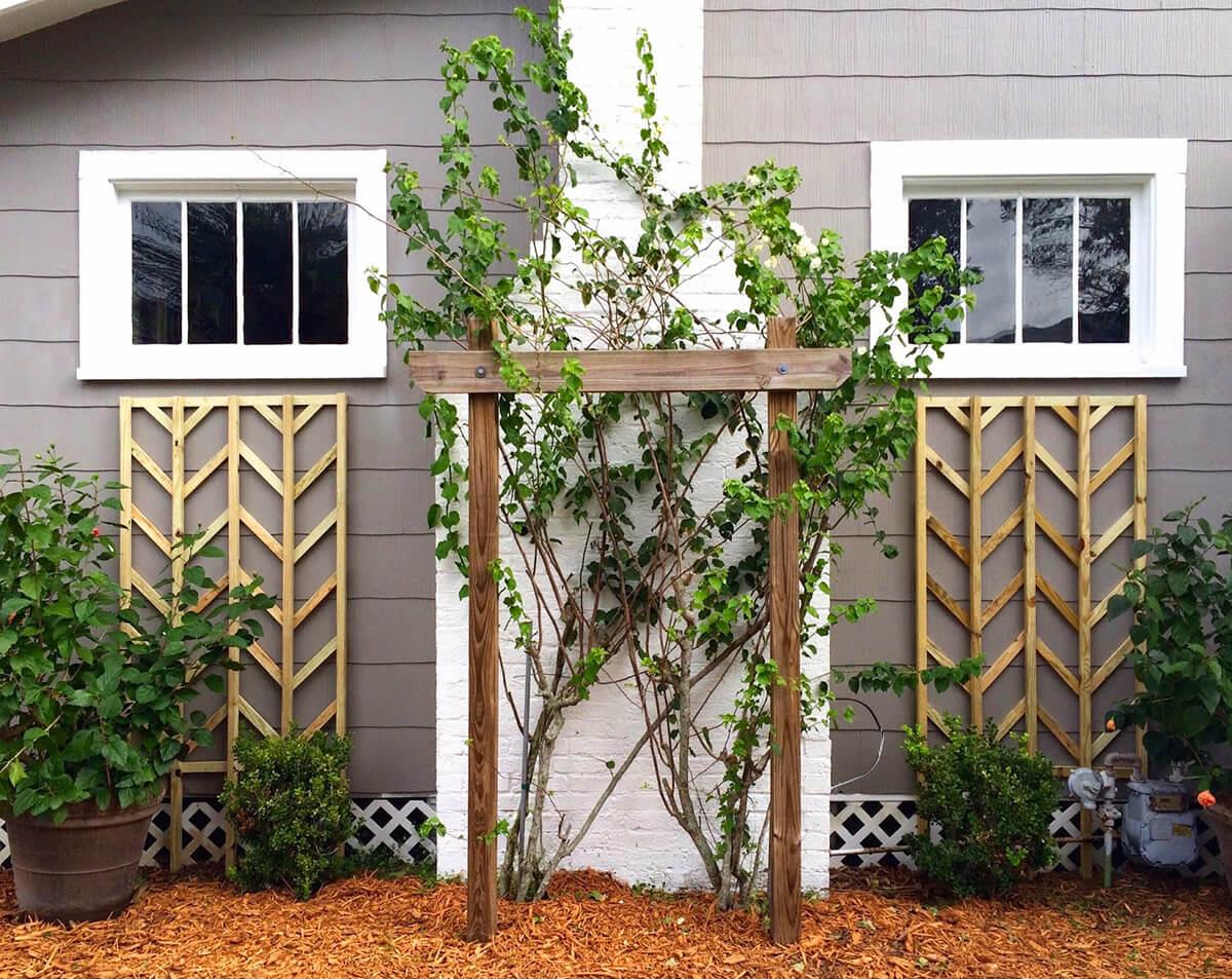 DIY Garden Trellis Designs