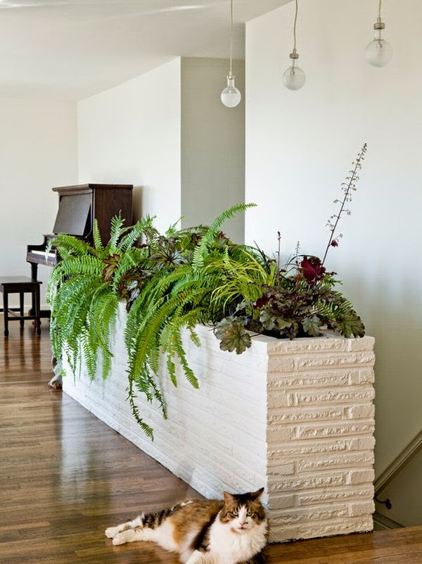 How You Can Bring Tropical Beauty Into Your House