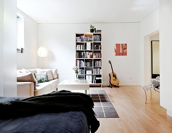 Luxurious Small Apartment Interior Design