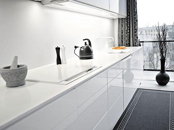 Elegant black and white interior duplex