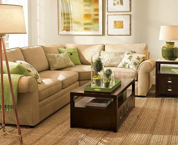 lime green and brown living room ideas leather sets orange nagpurentrepreneurs 28 decoration