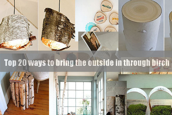 top ways to bring the outside in through birch