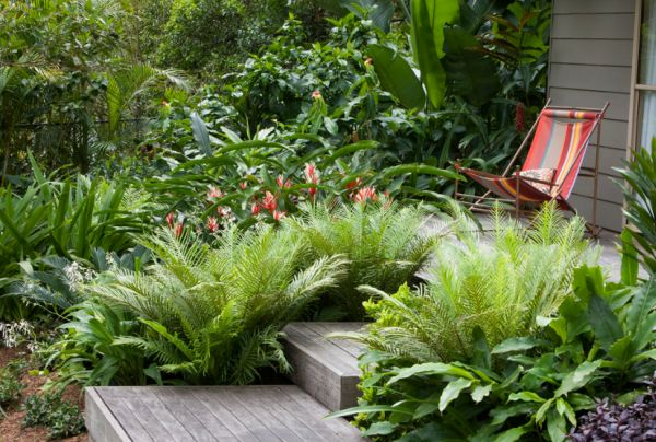create tropical garden