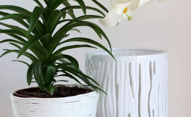 10 Cute Ways To Decorate Your Flower Pots