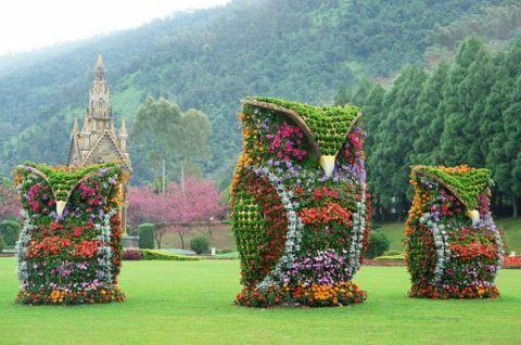 siepi decorate con arte topiaria