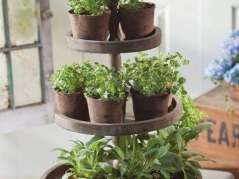 mini indoor garten small-space garden ideas