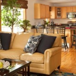 What Color Should I Paint My Living Room With A Tan Couch Images Contemporary Choose The Right Sofa For Your