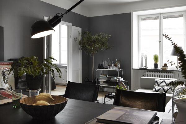 Masculine  Dark Apartment Interior Design