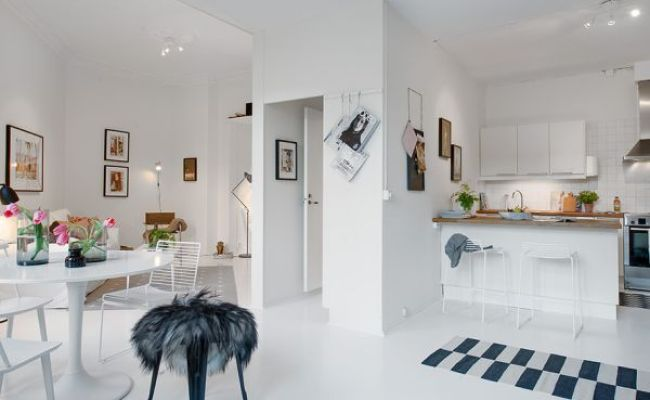 Small One Room Apartment Showcasing An Ingenious Layout